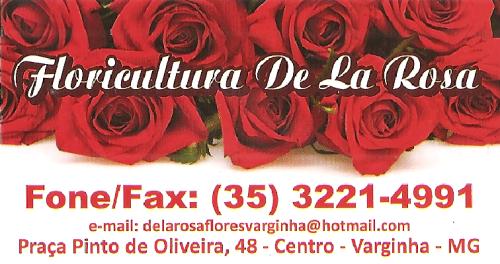 florcultura-varginha-telefone.png
